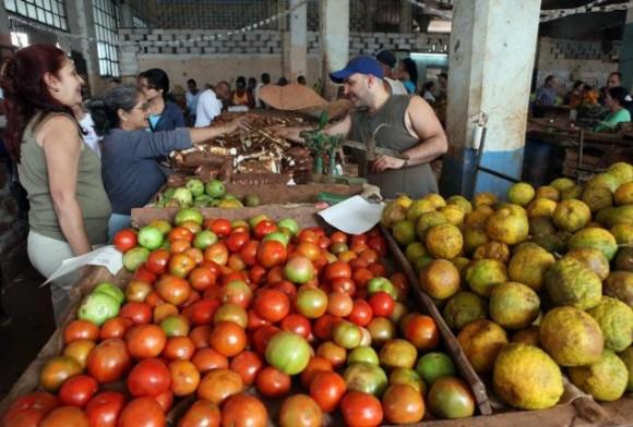 El comercio mayorista puede beneficiar la comercialización de productos agrícolas a precios más asequibles
