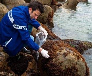 Fukushima: Reportan fuga de 750 toneladas de agua contaminada