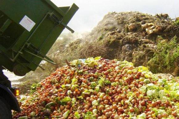 Más de un tercio de la comida que se produce en el mundo acaba en el cubo de la basura.