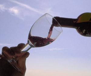 copa vino default