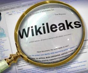 wikileaks-saber