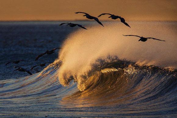 Foto: Blog de fotografía y medio ambiente.