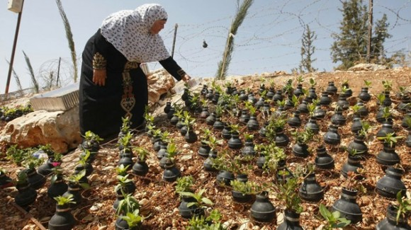 Granadas-Palestina