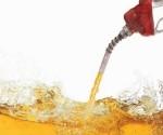 Logran producir biogasolina con la bacteria E. Coli