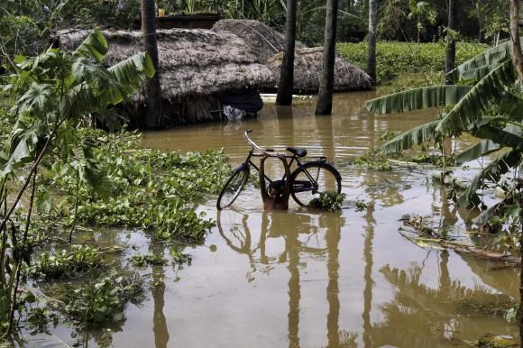 Un indio lleva su bicicleta a cuesta en medio de la inundación que dejó el ciclón Phailin este fin de semana en ese país. Foto: AP/ Biswaranjan Rout