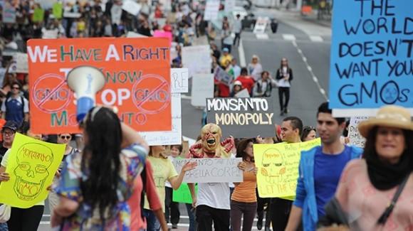 Marcha contra Monsanto. Foto: AFP.