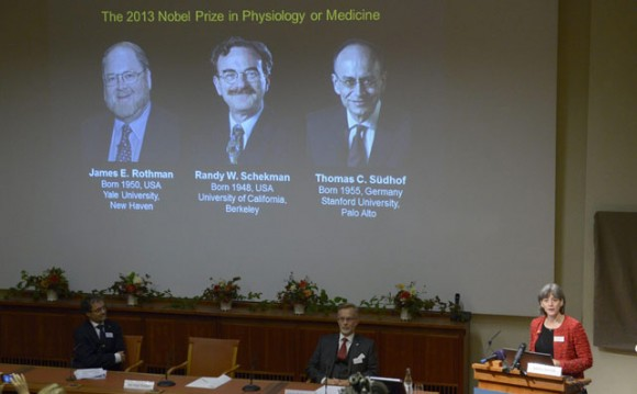 Juleen Zierath, chairman of the Nobel committee for medicine or physiology, speaks during the announcement of the winners of the 2013 Nobel prize for medicine or physiology in Stockholm