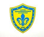 Bandera Partido Anticorrupción
