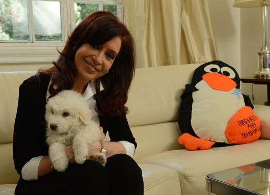 Cristina en la primera imagen tras su regreso a las labores diarias, junto al perrito Simón, un regalo que Adán Chávez, el hermano de Hugo, le hiciera en días recientes.