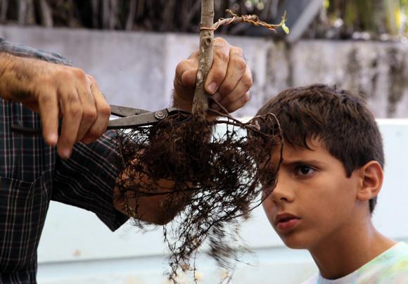 Taller de modelado de bonsái. Foto: Ladyrene Pérez/Cubadebate.