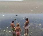 Buscando-Plata-Quilmes-Emiliana-Miguelez_CLAIMA20131226_0136_17