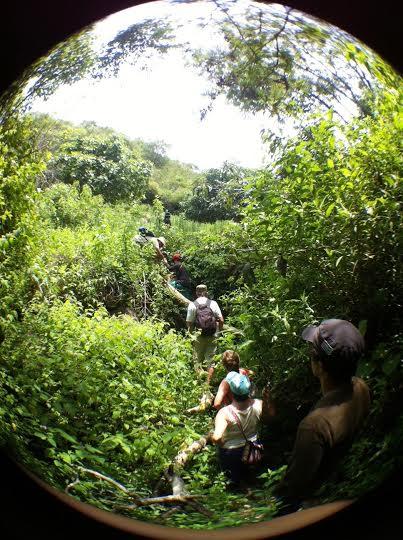 Camino a La quebrada del Churo. Foto: Kaloian.