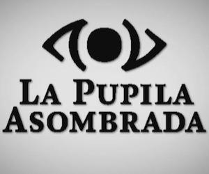 Foto 2 LA PUPILA ASOMBRADA