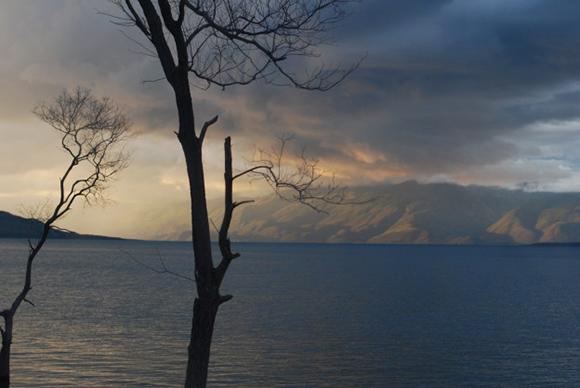 Lago Ronquillo