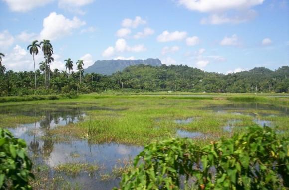 Vista del Yunque de Baracoa.Foto: Yurisley Valdes Mariño, ingeniero geologo y profesor del departamento de Geología del Instituto Superior Minero Metalúrgico de Moa