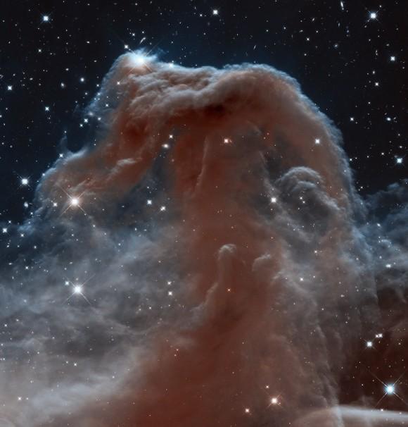 No todos los días se llega a ver una cara familiar en una nueva luz.. La nebulosa cabeza de caballo, uno de los más famosos objetos celestes, es conocido por su color negro. Pero aquí tenemos que verlo en longitudes de onda infrarrojas, haciendo visibles muchas características típicamente invisibles. Como la NASA escribió:      Luciendo como una aparición creciente de cabrillas de espuma interestelar, la Nebulosa Cabeza de Caballo icónica ha aparecido en libros de astronomía desde su descubrimiento hace más de un siglo. La nebulosa es un blanco favorito para los astrónomos aficionados y profesionales. Es sombrío a la luz óptica. Parece ser transparente y etéreo cuando se ve en longitudes de onda infrarrojas. Imagen: NASA ESA / Hubble Equipo / Patrimonio