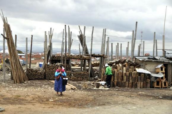 Venta de maderas a la orilla del camino. Foto: Kaloian.