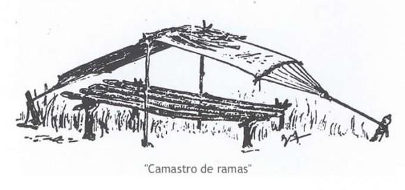 camastro