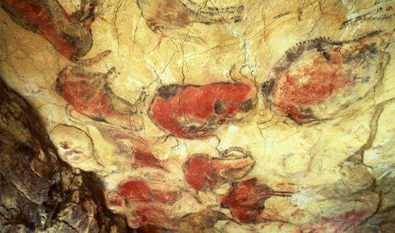 Pinturas en las cuevas de Altamira. Foto: Pedro A. Saura.