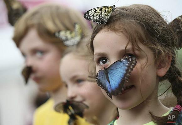 Niña con mariposa en la cara