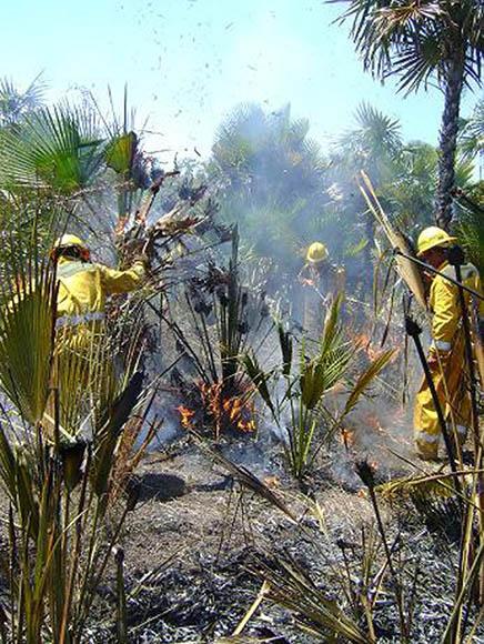 Incendio en Camagüey