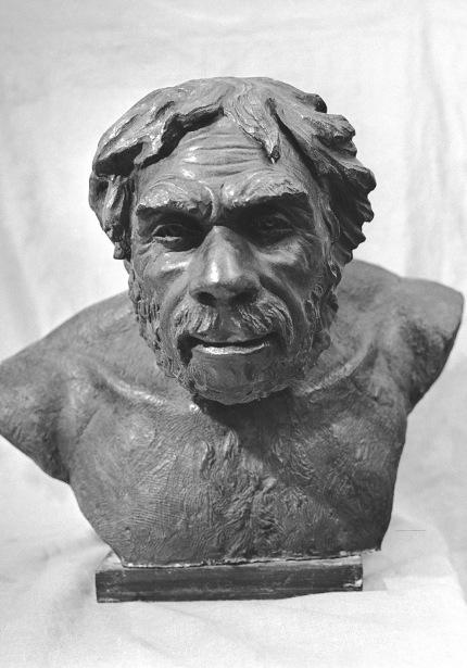 Reconstrucción de un hombre neandertal hecha por el antropólogo soviético M. Geurásimov a patrir de la estructura osea de un esqueleto hallado en Francia.
