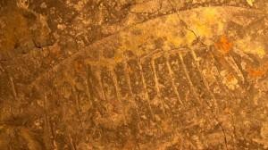 Hallan fósiles de extraños gigantes marinos