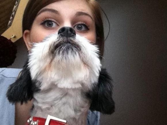 Barba perro