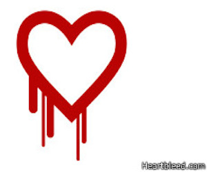 """El fallo fue llamado Heartbleed, """"corazón sangrante""""."""