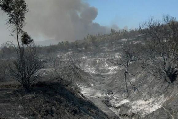 incendio valparaiso (1)