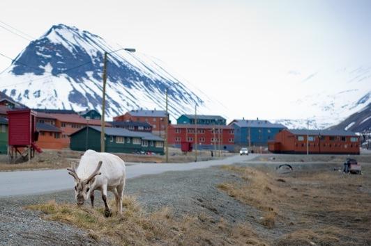 Desde el 20 de abril hasta el 23 de agosto, el Sol nunca se pone en Svalbard, al norte de Groenlandia, en el mar Ártico. © AFP Martin Bureau