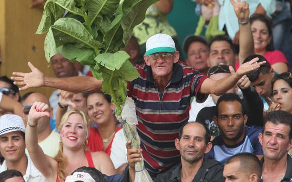 Hoy el tabaco no mareó a los yumurinos. Foto: Ismael Francisco/Cubadebate.