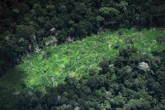 Una vista de un área de selva deforestada en el interior del territorio Ashaninka en el estado de Acre, noroeste de Brasil