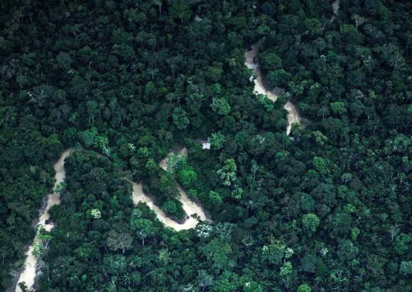 El río Xanine corre a través del territorio Ashaninka en el estado de Acre, noroeste de Brasil