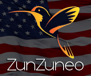 Zunzuneo: viola la Constitución de la Unión Internacional de Telecomunicaciones