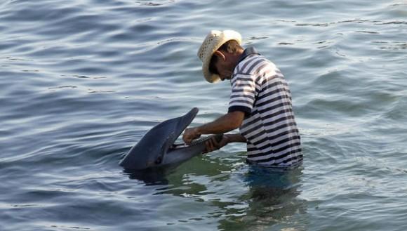 CUBA-VILLA CLARA-ESPECTACULO CON DELFINES