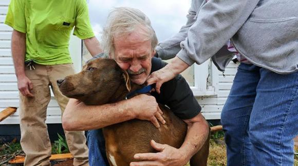 Greg Cook encuentra a su perro Coco dentro de su casa en Alabama después del tornado en Marzo de 2012
