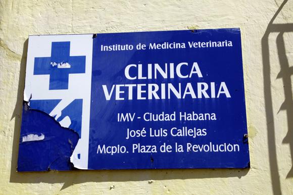 clinica carlos III  (6)