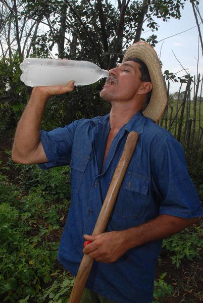 José Alfredo Silva Tapia, campesino productor de granos e integrante de la Cooperativa de Créditos y Servicios (CCS) Raúl Suárez Martínez, de la Asociación Nacional de Agricultores Pequeños (ANAP), del municipio Rodas, provincia de Cienfuegos,Cuba, 16 de mayo de 2014.  Foto: Modesto GUTIÉRREZ CABO/ AIN