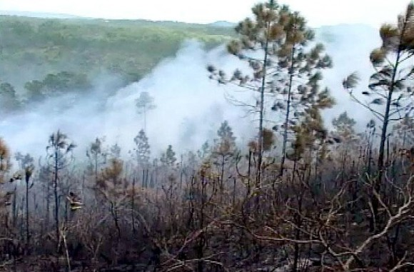 Incendio en Pinar del Río. Foto: Ronald Suárez Rivas/Periódico Granma