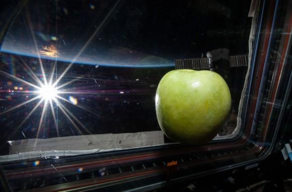 Una manzana fresca flota libremente cerca de una ventana en la Cúpula de la ISS se ofrece en esta imagen fotografiada por un miembro de la tripulación Expedición 38 el 6 de febrero de 2014. El sol brillante y el horizonte de la Tierra proporcionan el telón de fondo de la escena. (NASA )