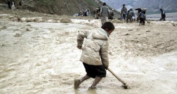 nino afgano