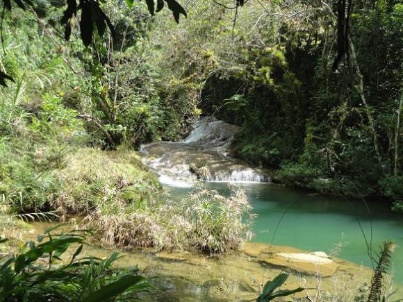 Poceta del venado  Parque_Guanayara (2) Yoandy Ramos Echevarría. Supervisor del Índice de Precio al Consumidor. Santa Clara. Villa Clara