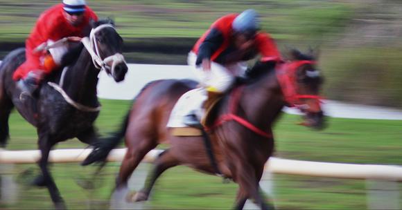 Juan Ramírez desde Colombia, nos envía esta foto que titula caballos de potencia.