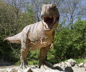 Nombres-de-dinosaurios-carnívoros-1