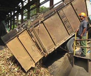 Producción azucarera aumentó en última zafra