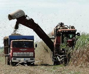 La zafra azucarera 2015-2016 se quedó por debajo de lo propuesto