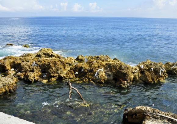 Como guirnaldas la basura adorna el arrecife. Foto. Roberto Garaicoa Martínez. CUBADEBATE