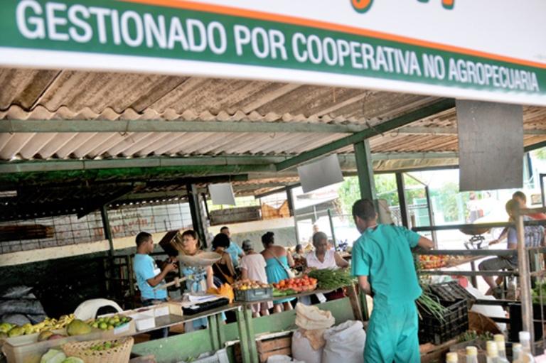 Cooperativas no agropecuarias.