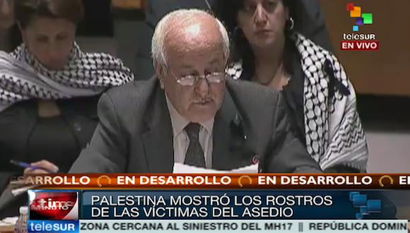 Embajador de Palestina